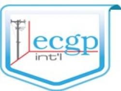 Electrocons Group Proiect Intl S.R.L.